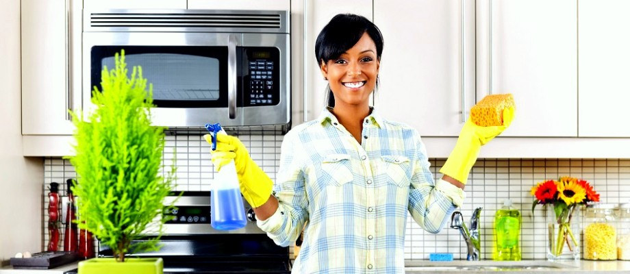 house-cleaning-wesley-chapel-home-page-slider-920x400